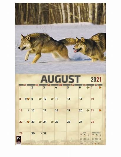 Wolves Calendar Wolf Flip