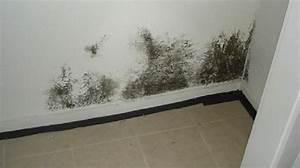 l39astuce efficace pour enlever la moisissure sur les murs With moisissure mur chambre sante