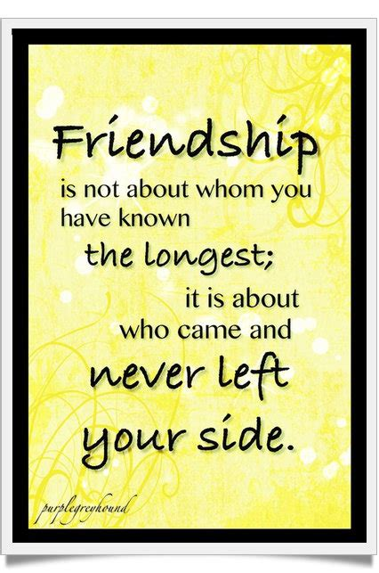 friendship quotes guaranteed    smile