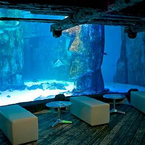 The Office Thank You Sea Life London Aquarium Christmas Office Parties And