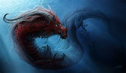 Dragon Chinese Underwater Dragons Wallpaperup Wallpapers