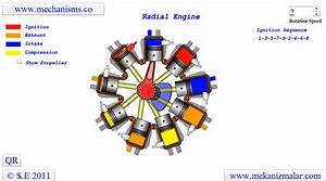 Diagram Of A Radial Engine Works Clips Form An Animation