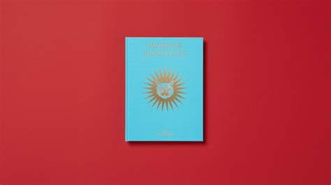 guccis  limited edition book   sold  arcana