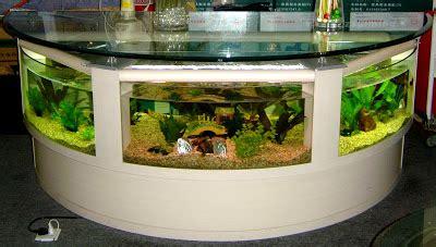cool aquariums  unusual fish tanks designs part