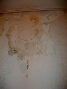 Comment Enlever Le Papier Peint : papier peint sur platre comment le retirer forum ~ Dailycaller-alerts.com Idées de Décoration