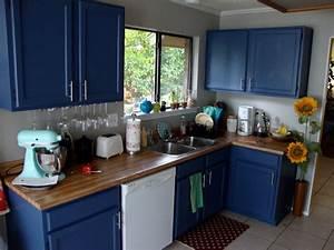Ellegant dark blue kitchen cabinets GreenVirals Style