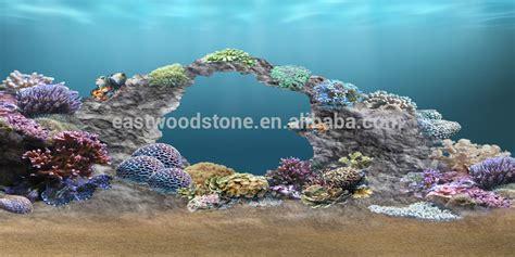 de lave aquarium de lave aquarium 28 images exemple nombre 166 de cat 233 gorie mixtes aquariums afrique de l