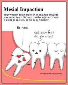 Funny Memes Dental Surgery