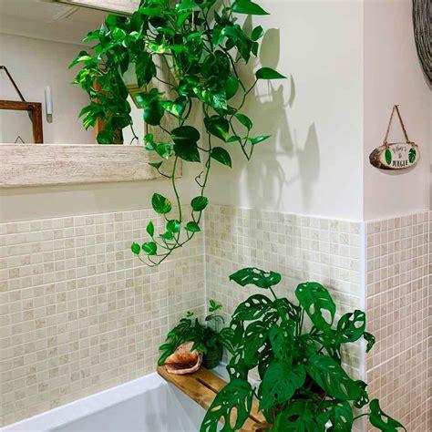 Top  Bathroom Trends Instagram Revealed