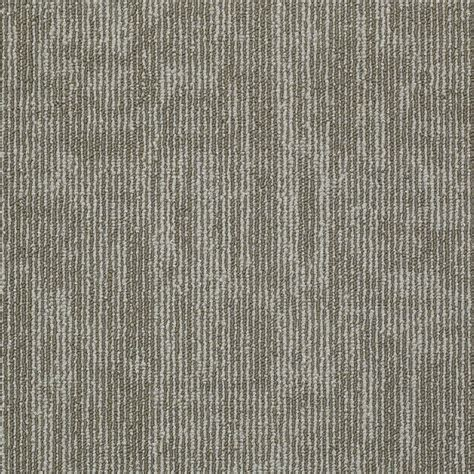 Shaw Berber Carpet Tiles by Shop Shaw In Demand Lokworx 12 Pack 24 In X 24 In Mirror