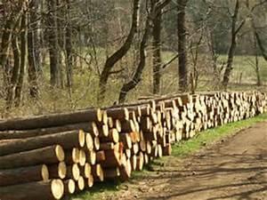 Bois De Chauffage Gratuit : bois de chauffage affouage tas energies ~ Melissatoandfro.com Idées de Décoration