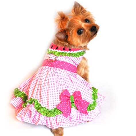 watermelon dog harness dress  doggie design baxterboo