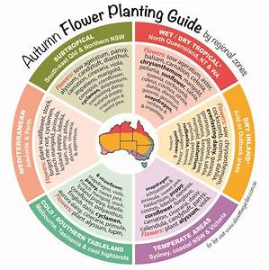 Seasonal Growing Guide Australia