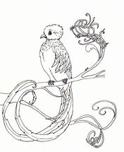 HD Wallpapers Coloring Page Quetzal