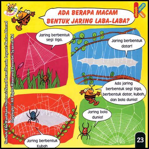 Harga Jaring Kalis Serangga ada berapa macam bentuk jaring laba laba ebook anak