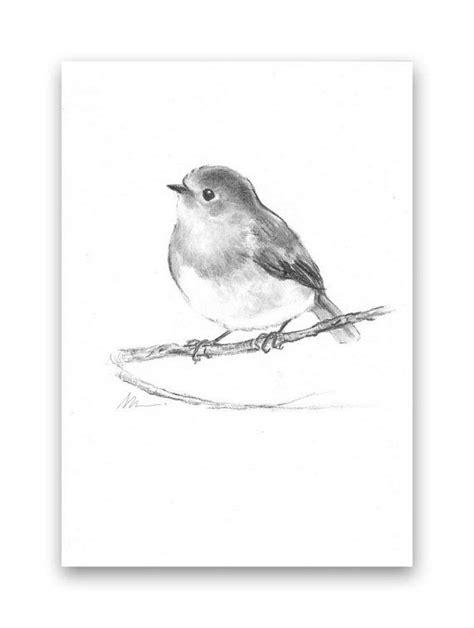 Bird Robin ORIGINAL Charcoal Drawing Hand Drawn Illustration Animal Nursery Black and White