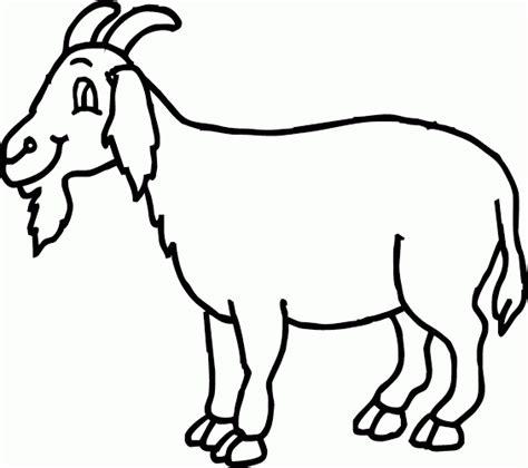 mewarnai gambar kambing berjenggot senyum tipis