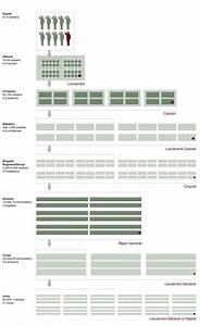 Us Military Structure Chart