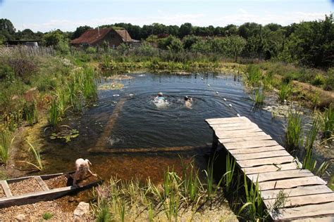 How To Build A Natural Swimming Pool On Your Homestead