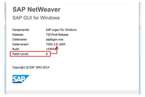 sap baixar sap gui 7.30 for windows 8