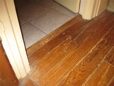 flooring transitions wonderful and creative design of tile wood floor transition homesfeed