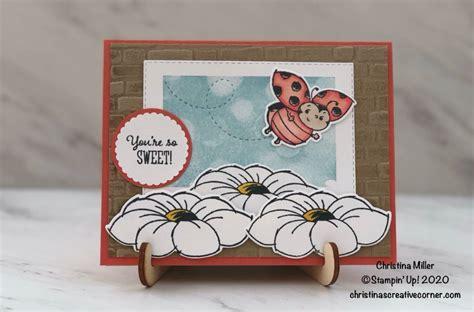 sweet  ladybug   card    images