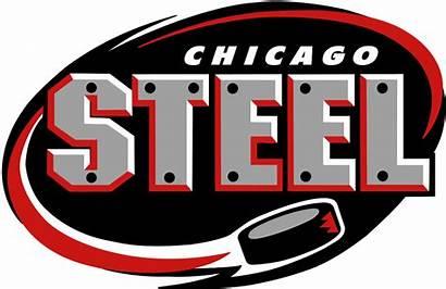 Steel Chicago Hockey Thank Wikipedia Team Ushl