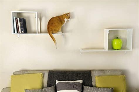 cat reach   level stylish climbing shelves