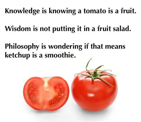 Tomato Meme - knowledge is knowing tomato is a fruit jokes memes pictures