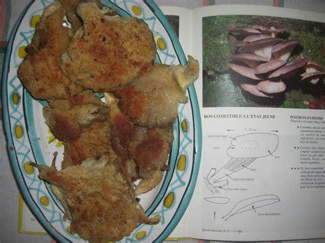 cuisiner pleurotes idées pour cuisiner les pleurotes la conque d 39 or