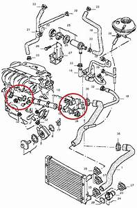2000 Jetta Vr6 Cooling System Diagram   37 Wiring Diagram Images