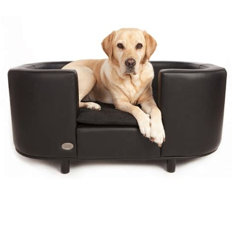 canapé bois et chiffon canapé pour chien canapés et sofas pour chien oh pacha