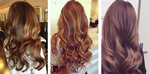 Light Brown Hair Color Shades Wwwpixsharkcom Images