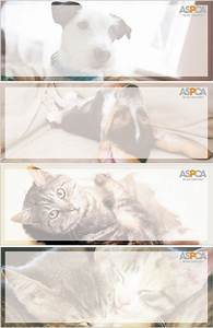 aspca address labels rl 415c harland clarke check printing With aspca address labels