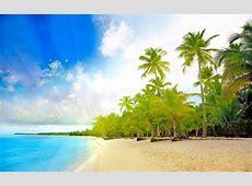 Tropical Windows 10 Theme themepackme