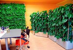 Bambus Als Zimmerpflanze : gr ne wand raffinierter blickfang f r die wohnung ~ Eleganceandgraceweddings.com Haus und Dekorationen