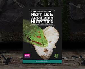 Books On Reptile Nutrition  Mbd And Bioactive Reptile Keeping