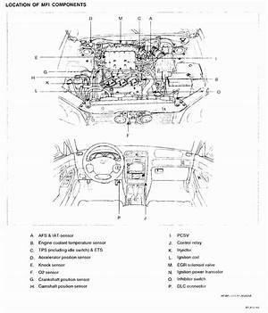 Wire Diagram 04 Hyundai Santa Fe Ets 25862 Netsonda Es