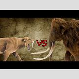 Prehistoric Predators Bear Dog | 480 x 360 jpeg 32kB