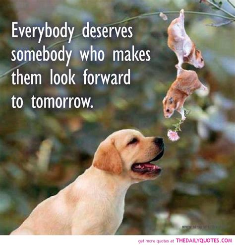 Animal Wallpapers With Quotes - quotes about helping animals quotesgram