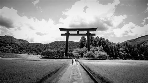 black white countryside field  photo  pixabay