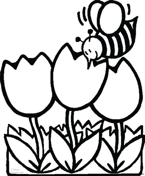 bee  flowers coloring sheet  kidsfree printable coloring pages  kids