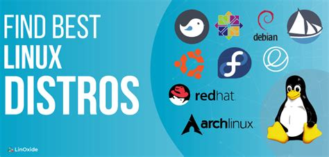 Best Linux Distro For Developers Best Linux Distro For Developers 2019 The Best Developer