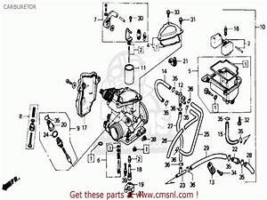 1986 Honda Fourtrax 350 Carburetor Diagram