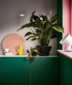 Pflanzen Bei Ikea : die 96 besten bilder von ikea pflanzen in 2019 ikea ~ Watch28wear.com Haus und Dekorationen