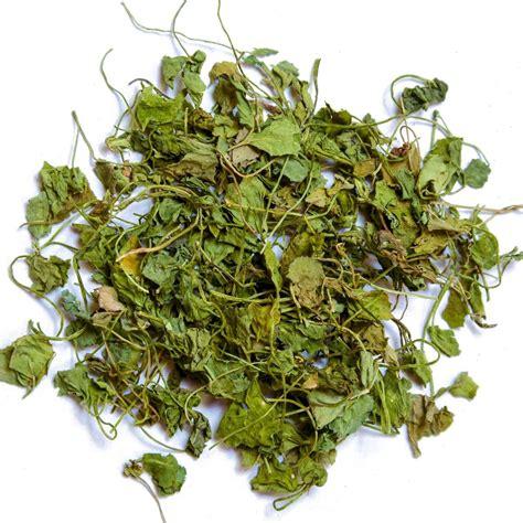 Dried Fenugreek Leaves Buy Fenugreek Leaves Spice House