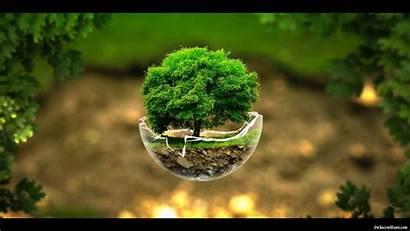 Nature Wallpapers Desktop Natural Grass 1080 Trees