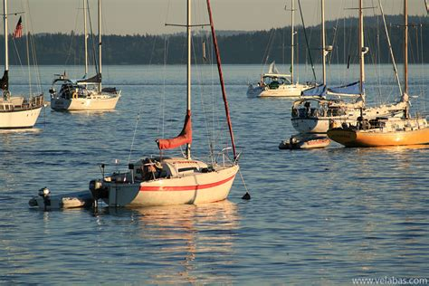 Wooden Boat Festival by Wooden Boat Festival Photos From Port Townsend Wa