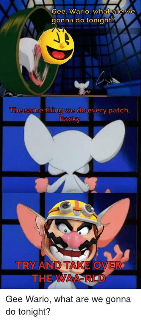 Wario Memes - gee wario what are we gonna do tonight the samme thing we do every patch packy try and take