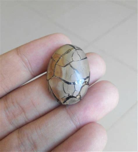 Batu Cincin Sisik Naga jual batu sisik naga sisik naga enrekang